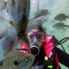 PennyroyalScubaFish
