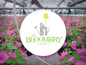 Opening Weekend for the Spring of 2018 Season @ The Bloomery | Hopkinsville | Kentucky | United States