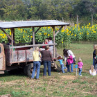Loading for Hayride
