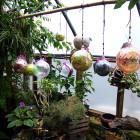 Brushy Fork-Balls in Window